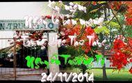Kỷ Niệm Ngày Lễ Bổn Mạng Trung Học Tư Thục Nguyễn Trường Tộ - Vĩnh Long