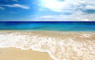 """""""How Deep Is The Ocean?"""" """"Biển Đời"""""""